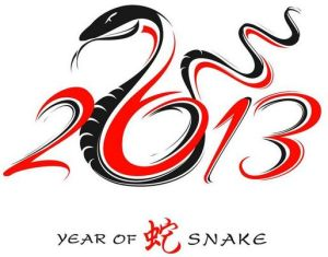 year-of-the-water-snake